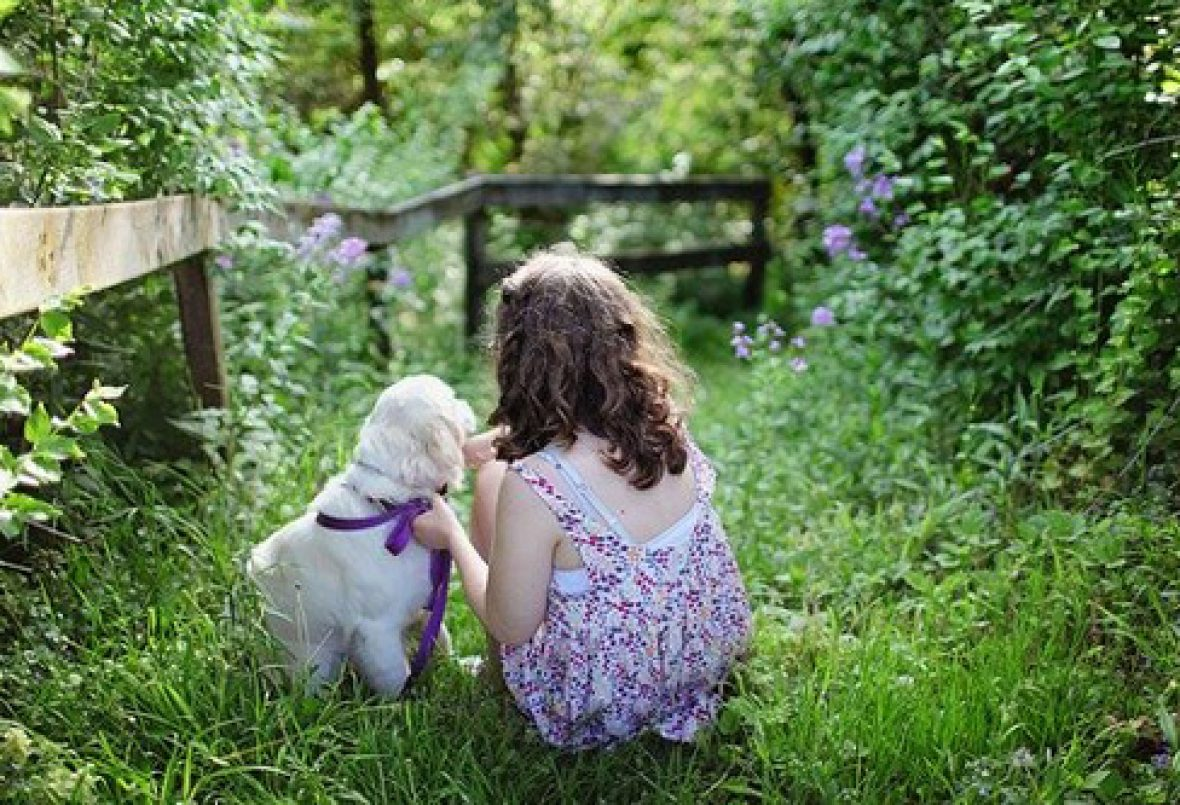 Six Points to Consider When Choosing a Pet For Your Child